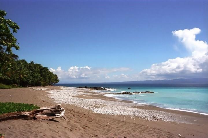 Matapalo Beach Guanacaste
